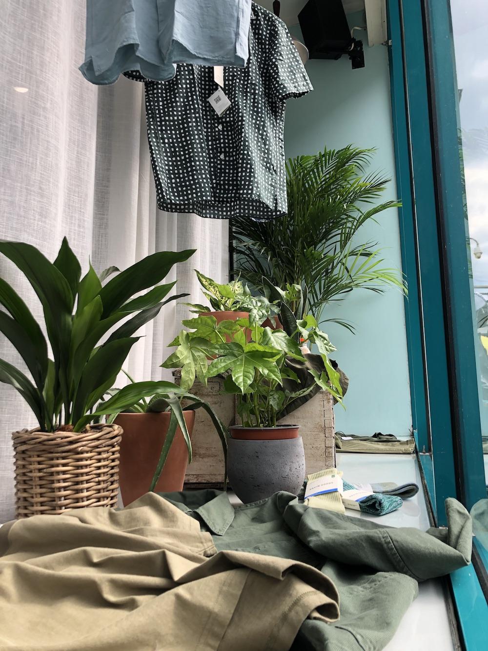 spring 2021 tonic portobello back to nature window display